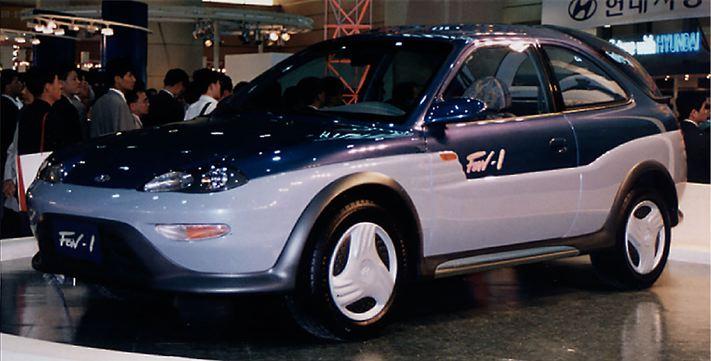 Fgv11